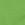 Tree Top Green/ Black